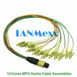 12 cores MPO hydra cable assemblies
